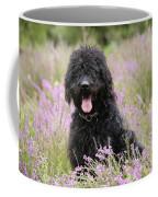 Black Labradoodle Coffee Mug