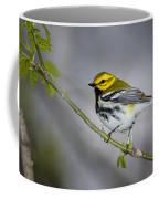 Black Throated Green Warbler Coffee Mug