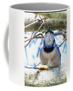 Blue Jay With Bread  Coffee Mug