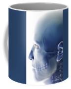 Bones Of The Face Coffee Mug