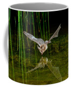 California Leaf-nosed Bat At Pond Coffee Mug