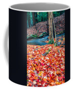 Chesterfield Gorge New Hampshire Coffee Mug