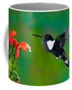 Collared Inca Hummngbird Coffee Mug
