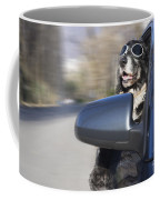 Cool Dog Coffee Mug
