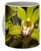 Cymbidium Orchid Coffee Mug