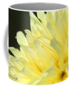 Dahlia Named Kelvin Floodlight Coffee Mug