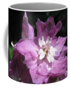 Delphinium Named Magic Fountains Lilac Pink Coffee Mug