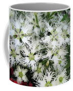 Dianthus Superbus - White Coffee Mug