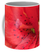 Double Asiatic Lily Named Cocktail Twins Coffee Mug