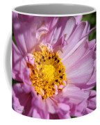 Double Click Cosmos Named Rose Bonbon Coffee Mug