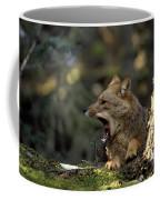 Environmental Woes Of Tierra Del Fuego Coffee Mug