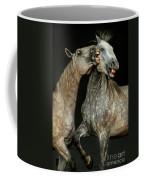 Flamenco Coffee Mug
