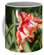 Flaming Parrot Tulip Coffee Mug