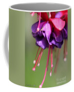 Fuchsia Named Dark Eyes Coffee Mug