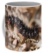 Glanville Fritillary Butterfly Caterpillar - Melitaea Cinxia Coffee Mug