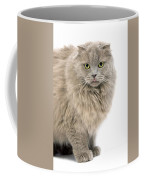 Highland Fold Lilac Self Coffee Mug