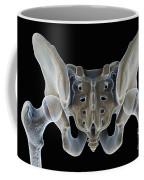 Hip Bones Male Coffee Mug