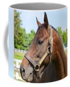 Horse On A Farm  Coffee Mug