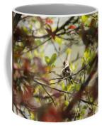Hummingbird In Spring Coffee Mug