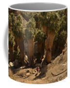 Indian Canyon Coffee Mug