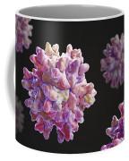 Infectious Bursal Disease Virus Coffee Mug