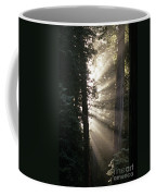 Jedediah Smith Redwoods State Park Redwoods National Park Del No Coffee Mug