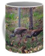 Juvenile White Ibis Coffee Mug