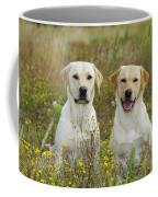 Labrador Retriever Dogs Coffee Mug