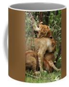 Lion Cubs On The Masai Mara  Coffee Mug