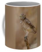 Little Owl Athene Noctua Coffee Mug