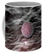 Morula 4-6 Days Coffee Mug