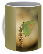 Nature And Places Of Spain Coffee Mug