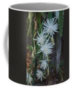 Night Blooming Cactus Coffee Mug