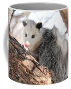 North American Opossum In Winter Coffee Mug