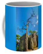 Old And Ancient Dry Tree On Top Of Mountain Coffee Mug