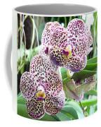 Orchid Coffee Mug