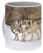 3 Pack Coffee Mug