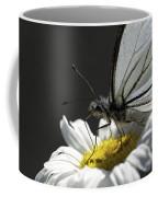 Pine White Butterfly Coffee Mug