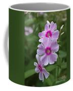 Pink Wood-sorrel  Coffee Mug