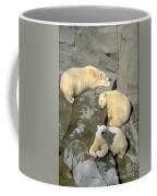 3 Polars Coffee Mug