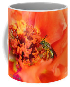 Portulaca Named Sundial Tangerine Coffee Mug