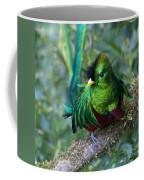Quetzal Coffee Mug