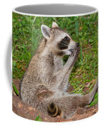 Raccoons Coffee Mug