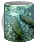 Rainbow Trout Coffee Mug by Les Cunliffe