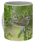 Red-eyed Vireo Coffee Mug
