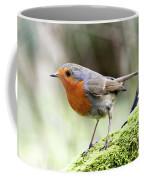 Rouge Gorge Erithacus Rubecula Coffee Mug