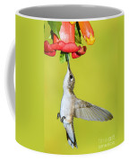 Ruby-throated Hummingbird Female Coffee Mug
