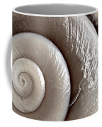 Seashell Detail Coffee Mug by Elena Elisseeva