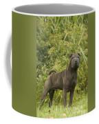 Shar Pei Dog Coffee Mug