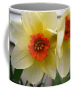 Small-cupped Daffodil Named Barrett Browning Coffee Mug
